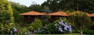 Madeira-Hotel-Quinta-Das-Eiras-15.jpg