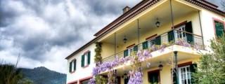 Madeira Hotel Quinta do Cabouco 020