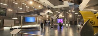 Museu da Baleia Caniçal Machico Choose Madeira (6)